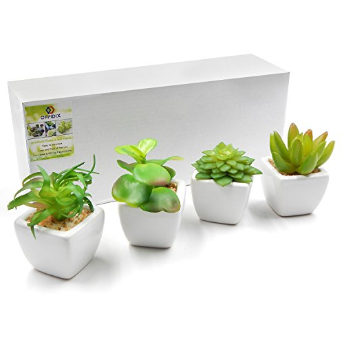 Offidix artificial succulent plants for home office for Artificial plants indoor decoration